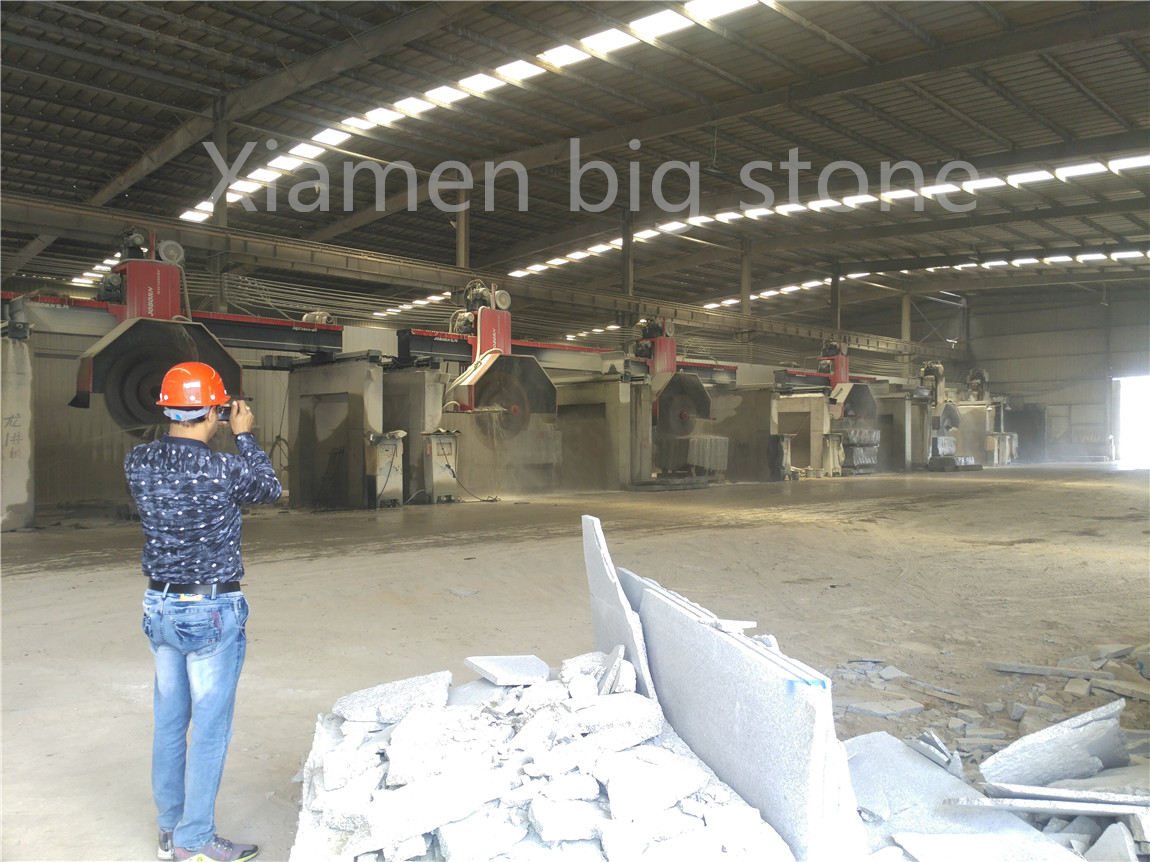 Wuhan factory G603 client visiting