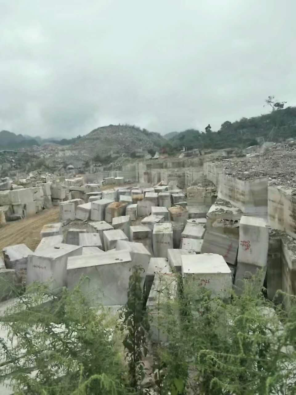 White Wood Marble Quarry