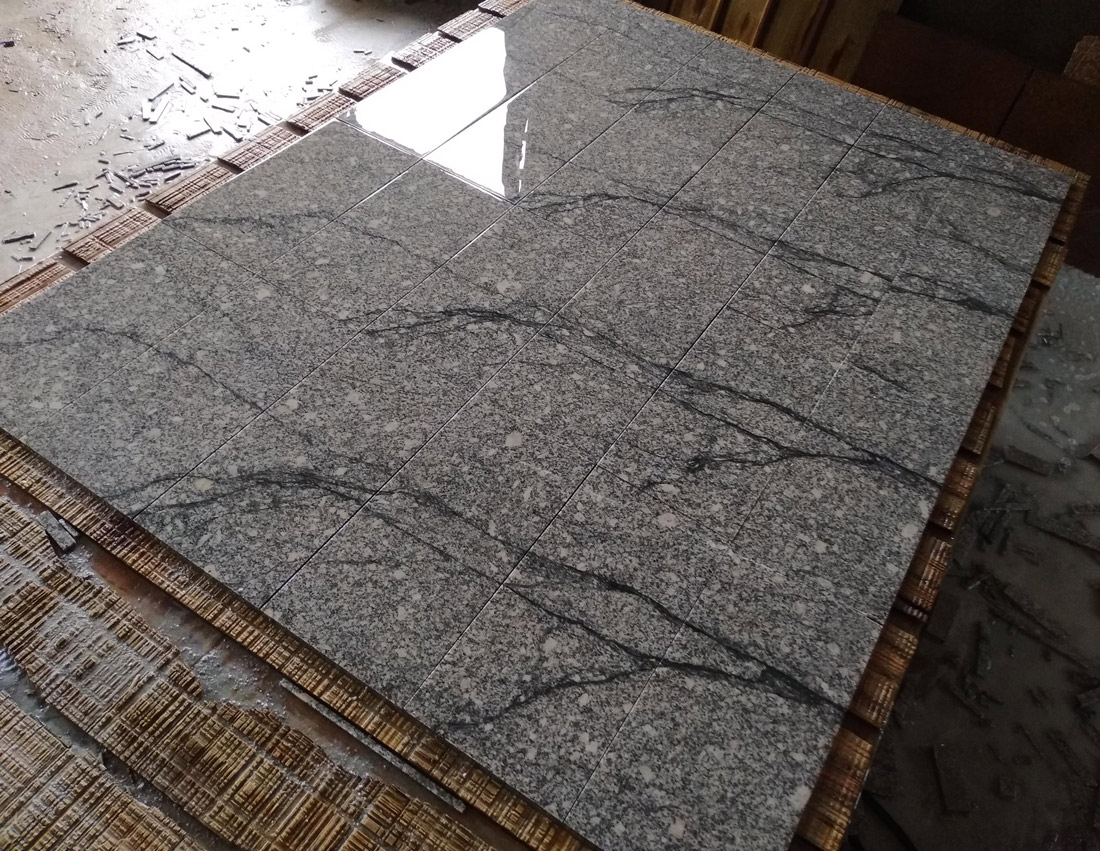Fantasy Granite Tiles for Floor and Wall