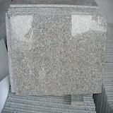 G636 Tiles Polished