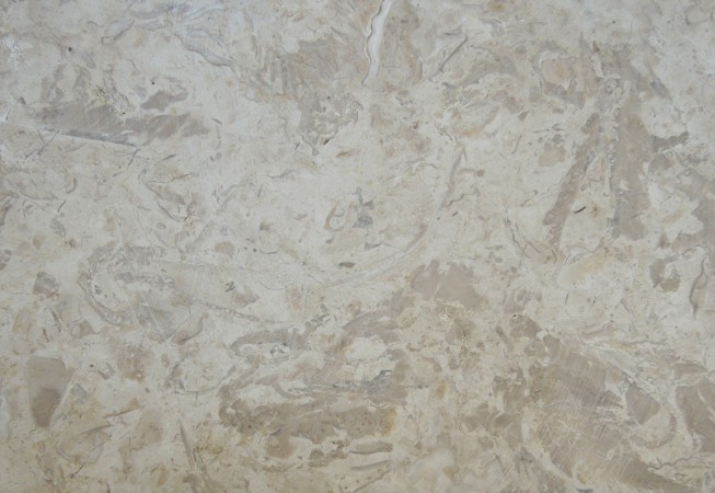 Crema Marfil Marble Brown Touch