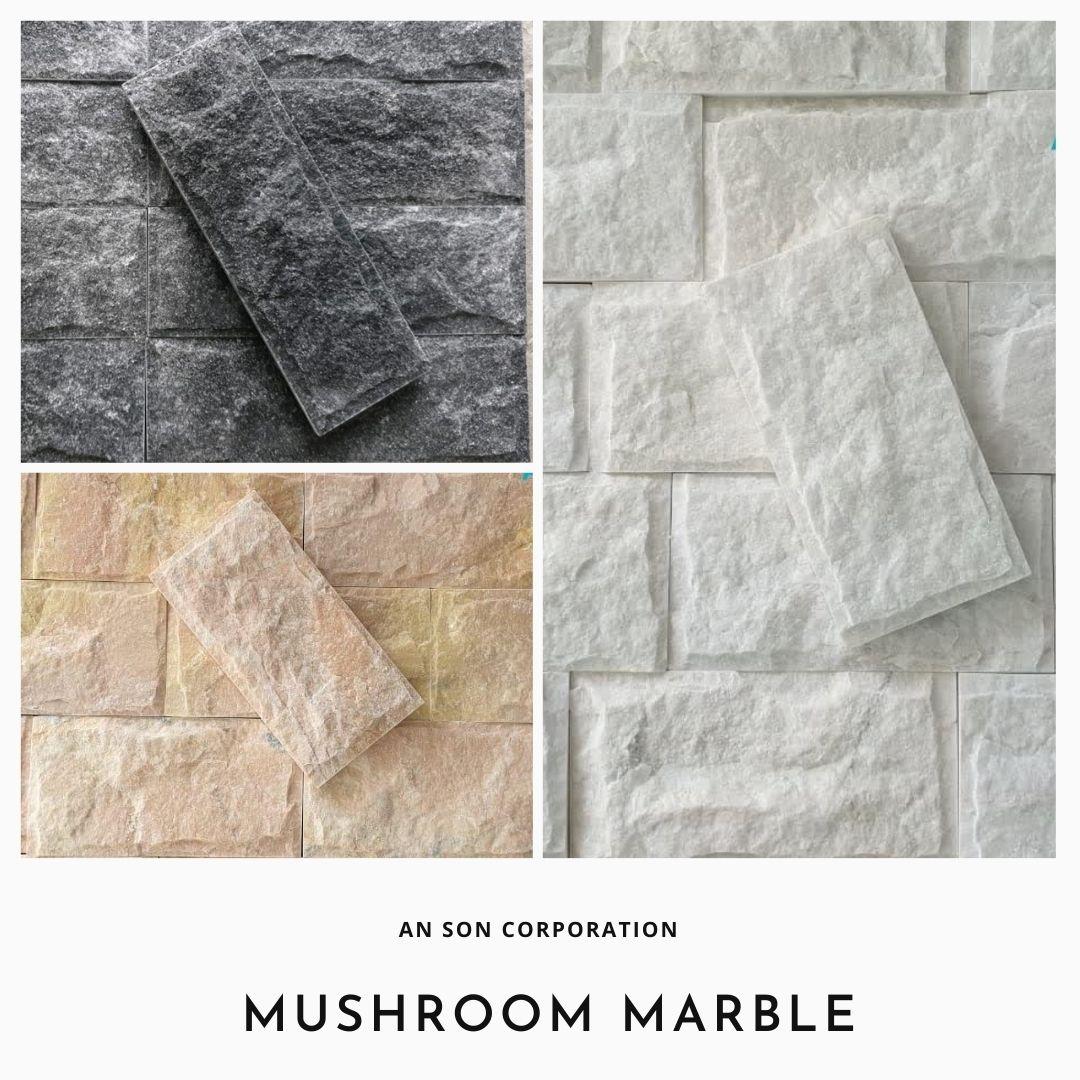 MUSHROOM MARBLE FOR WALL CLADDING