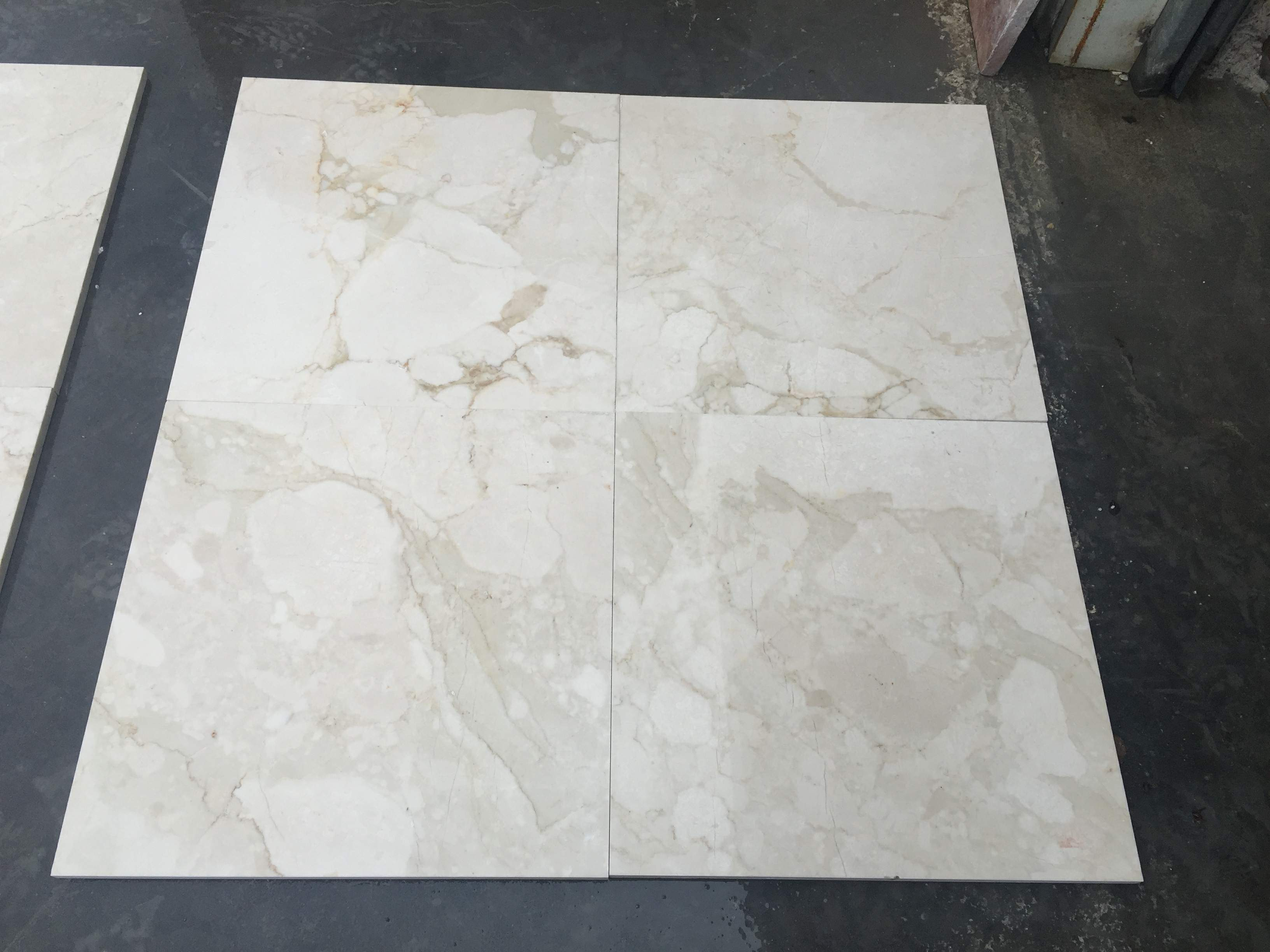 Botanica Beige Marble Stock Products