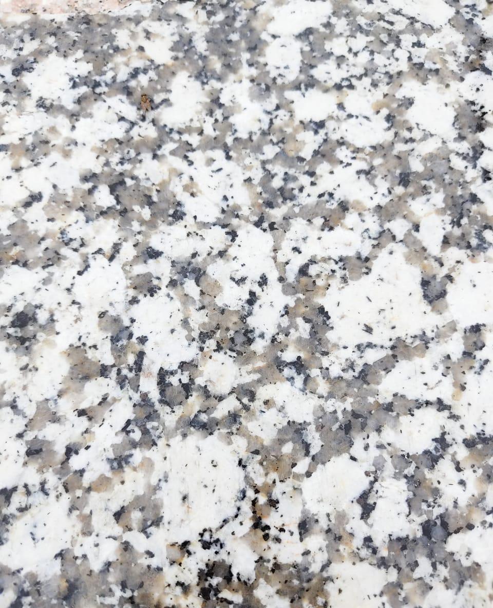 Cotton White Granite