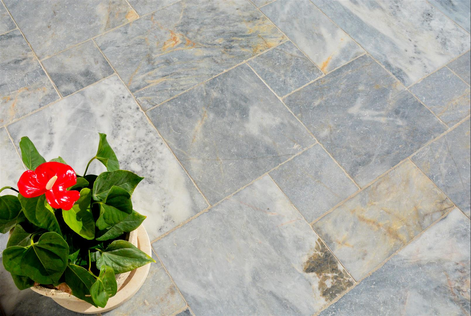Blue Moon Gold Marble
