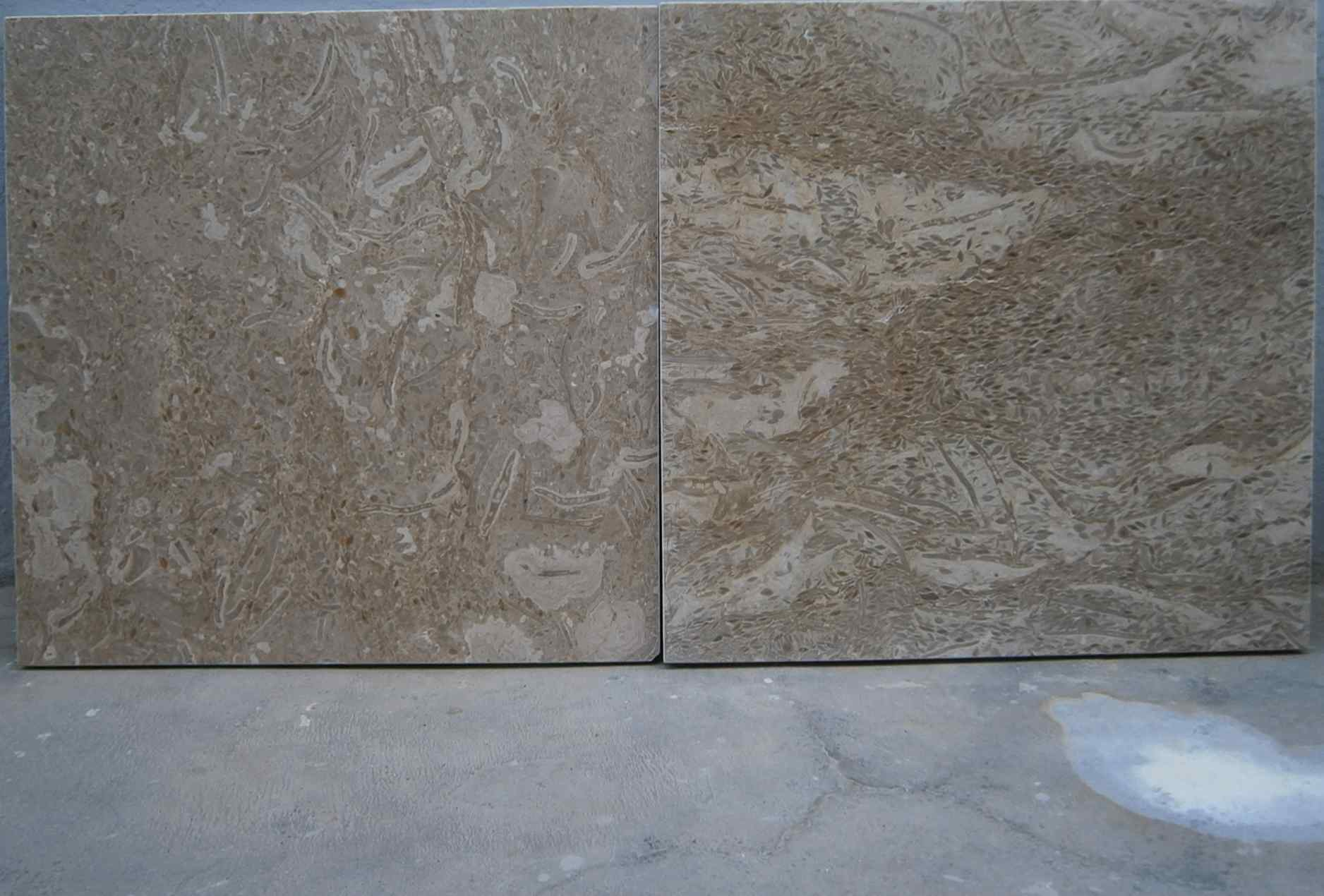 FOSSILS DARK BEIGE MARBLE SLABS  TILES & BLOCKS