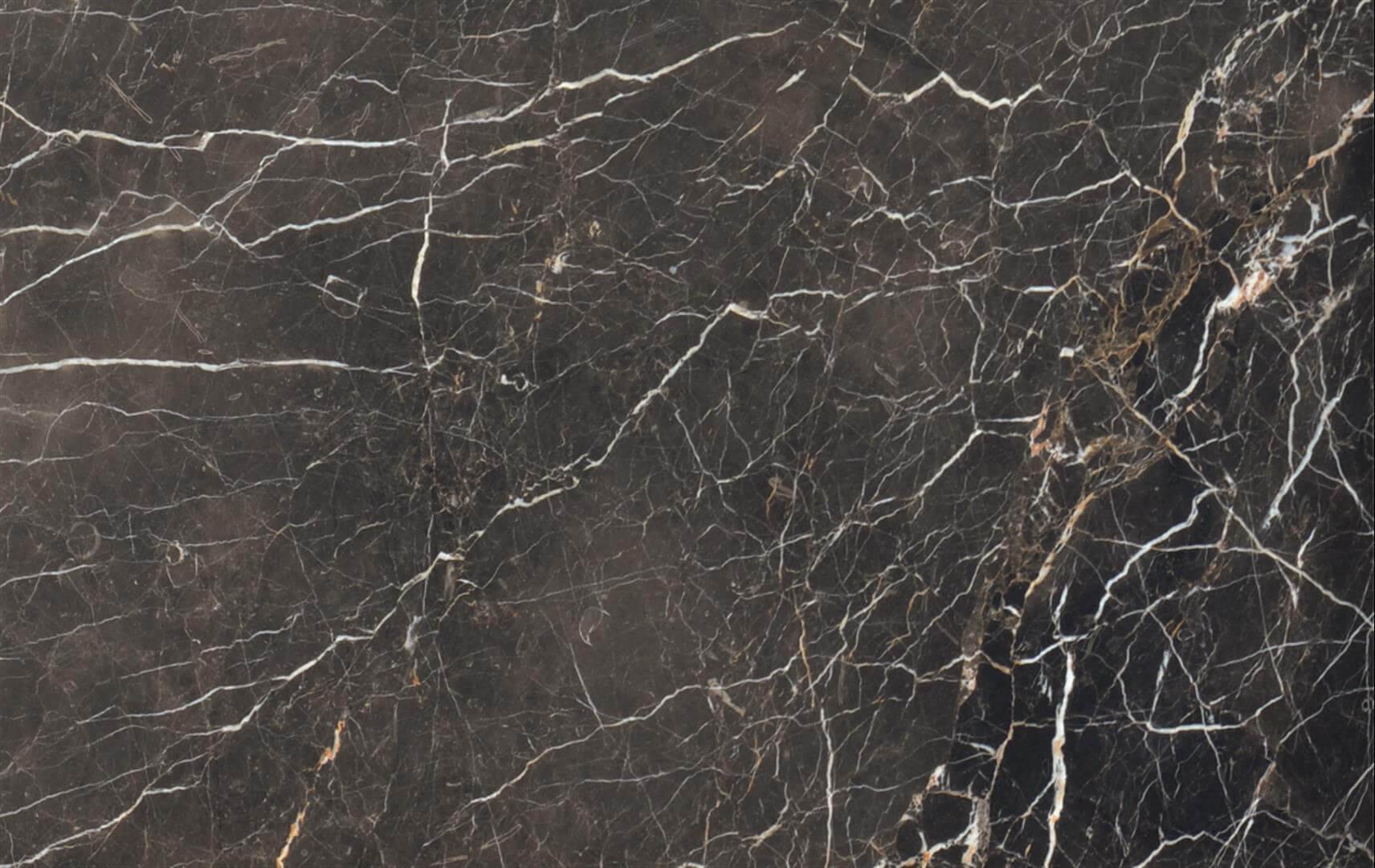 Noir Saint Laurent Marble-China Bruno Perla Marble