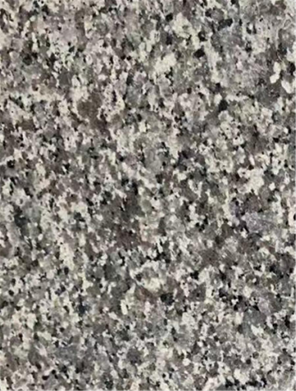 Snow Grey Dark Grey Granite China