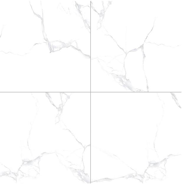 MIKADO - M6091 - GLOSSY PORCELAIN TILE SIZE 60X60