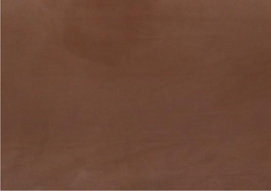 Absolute Brown
