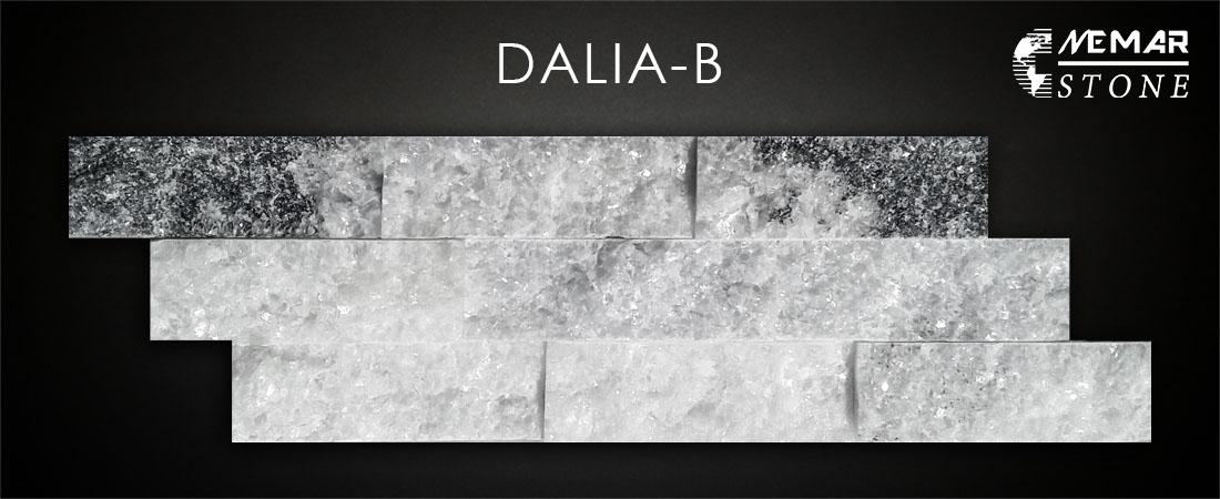 DALIA-B
