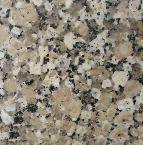 Adonis Flower Granite