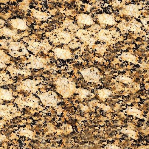 Amarelo Galho Granite