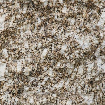 Amarelo Moirinte Granite