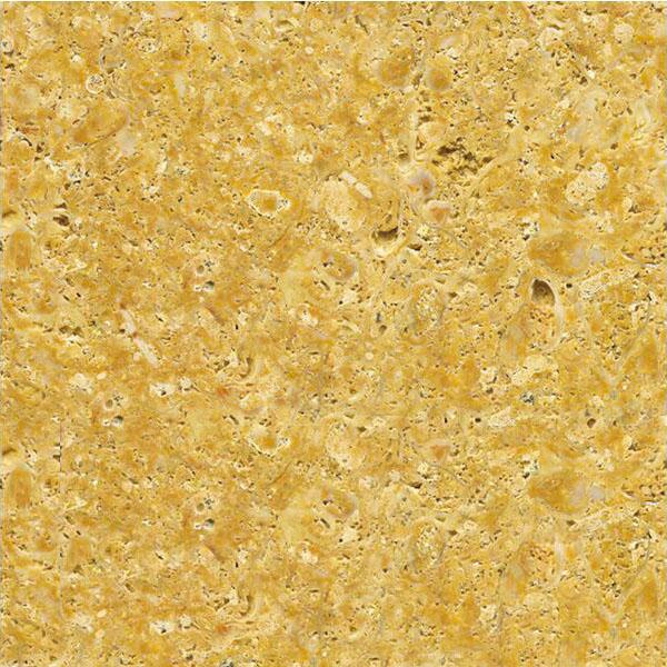 Amarillo Fosil Limestone
