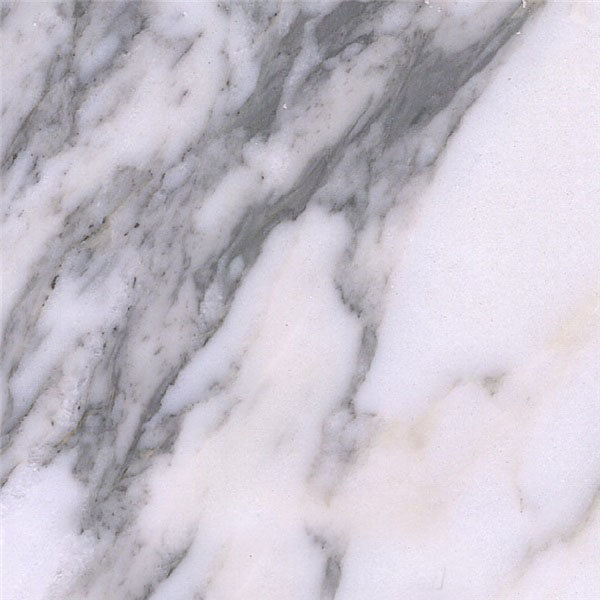 Arabescato Collettino Marble