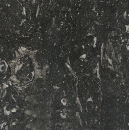 Arcadia Black Marble