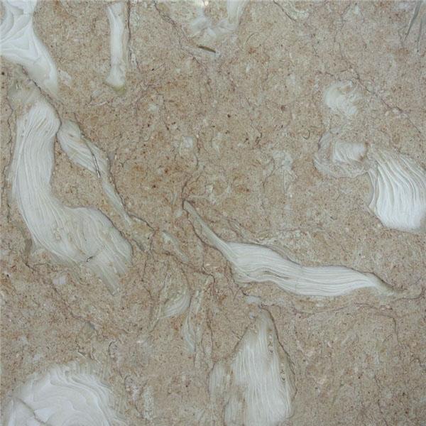 Art Fossil Limestone