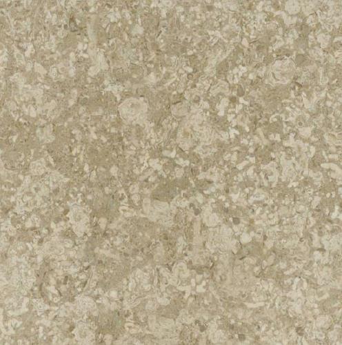 Asenka Beige Limestone