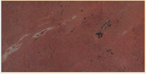 Autumn Red Marble