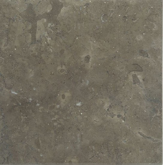 Avallon Limestone