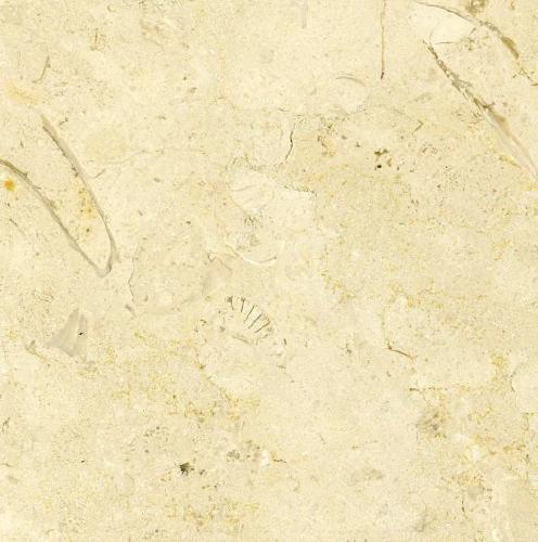 Balzac Fleuri Limestone