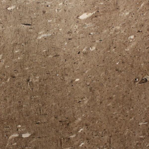 Beauty Musk Quartzite
