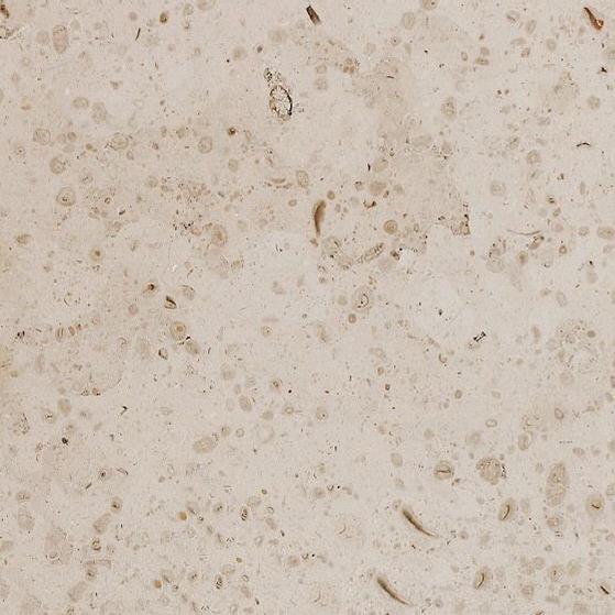 Beige Perola Limestone