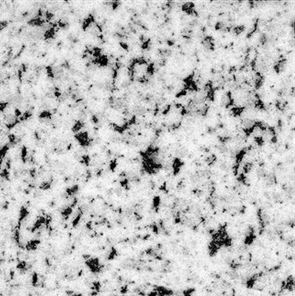 Bianco Alaky Granite