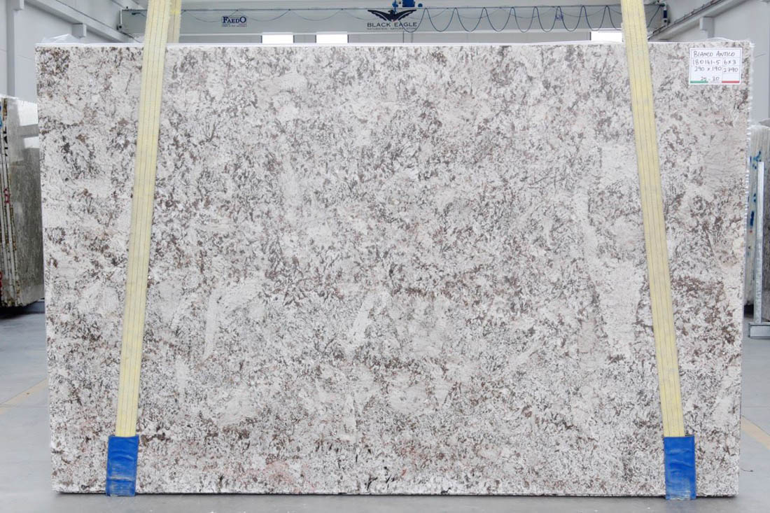 Bianco Antico Granite White Big Slabs