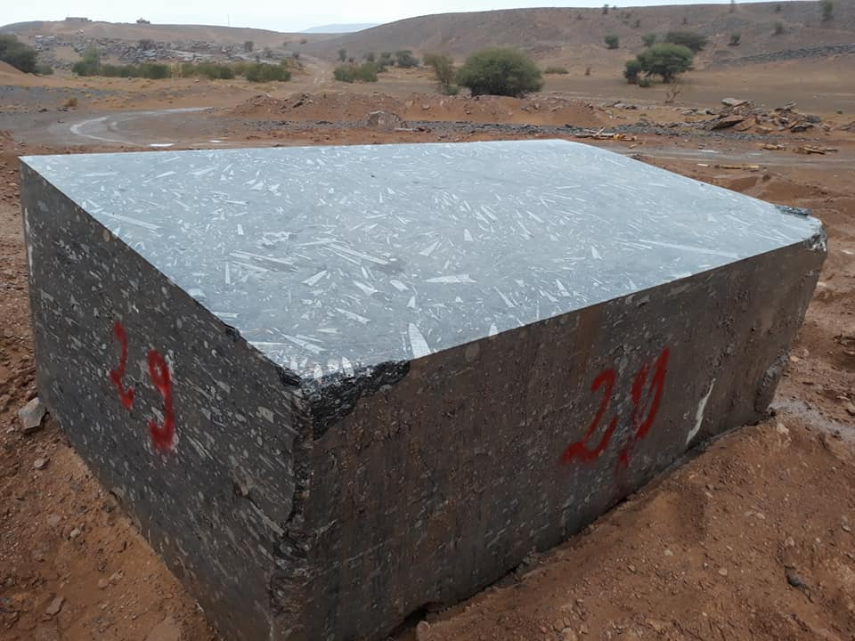 Black Fossil Marble Blocks from Morocco