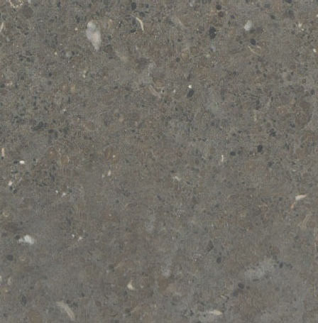 Borriol Limestone