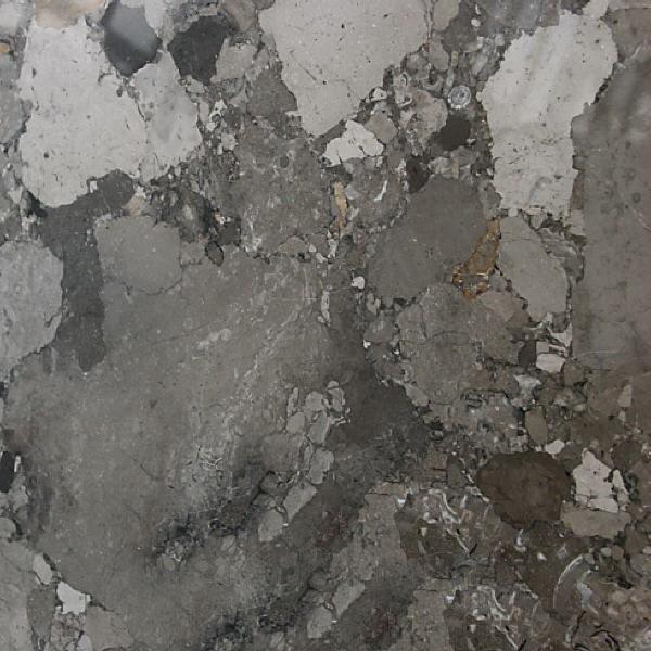 Breccia Carsica Marble