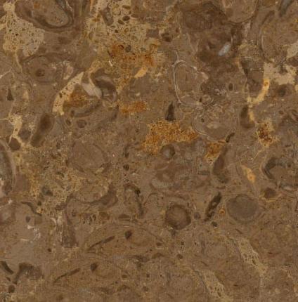 Breccia Dourada Limestone