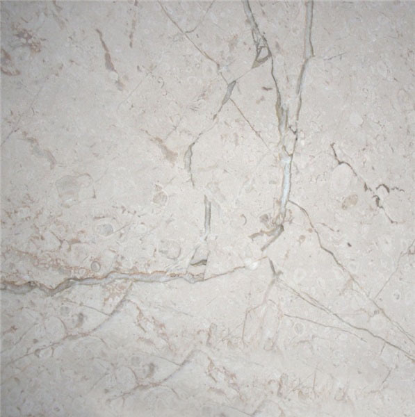 Breccia Marina Light Marble