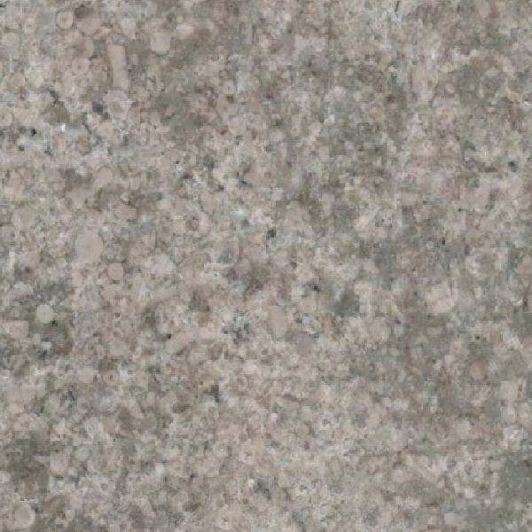 Bronceado Sierra Elvira Limestone