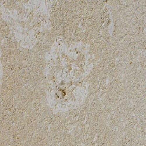 Caberan Coquillee Limestone