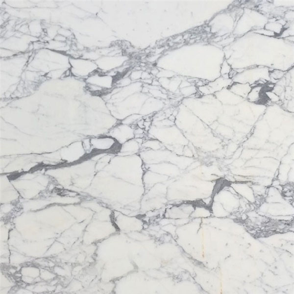 Calacatta Galileo Marble