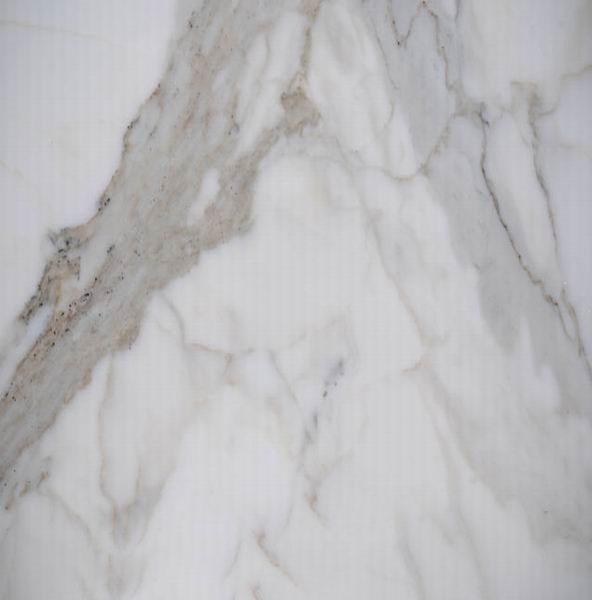 Calacatta Pearl Marble