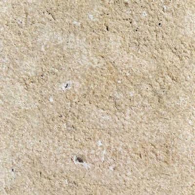 Caliza del Paramo Limestone
