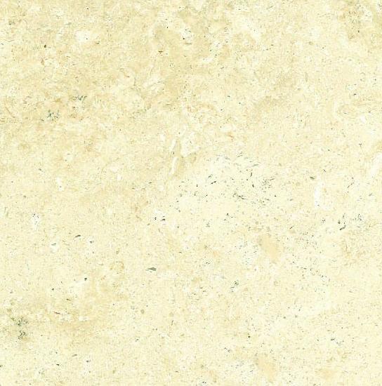 Camel White Limestone
