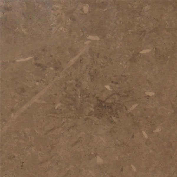 Carthage Brown Marble