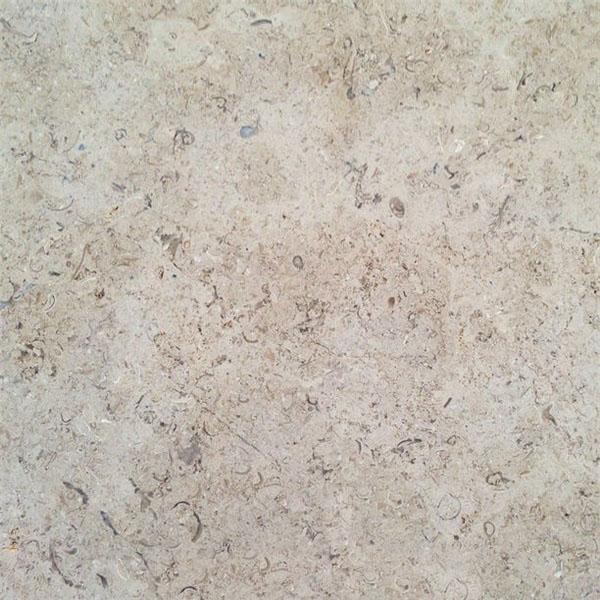 Chambolle Limestone