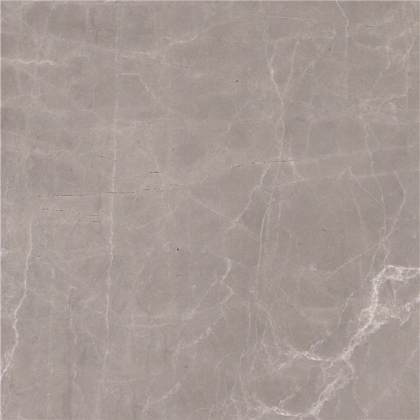 Champagne Gray Marble
