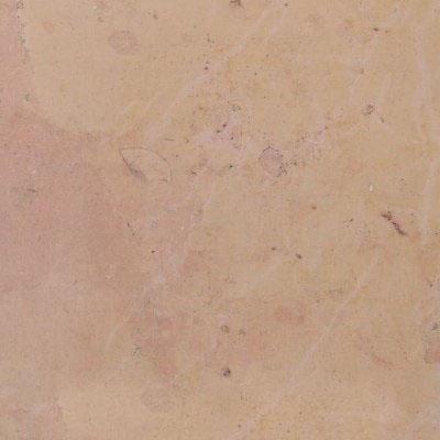 Chassagne Beauharnais Saumone Limestone