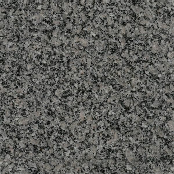 Chintamani Grey