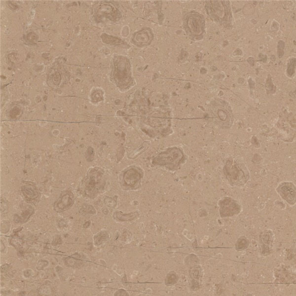 Classic Beige Moired Marble