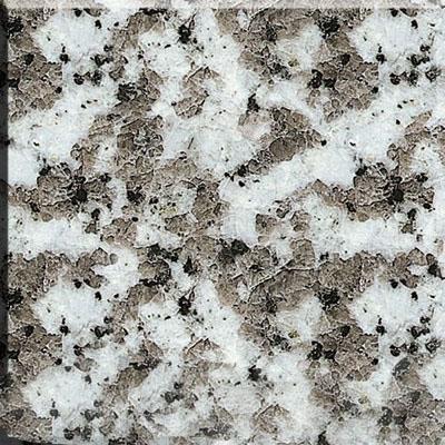 Coarse Grain White Granite