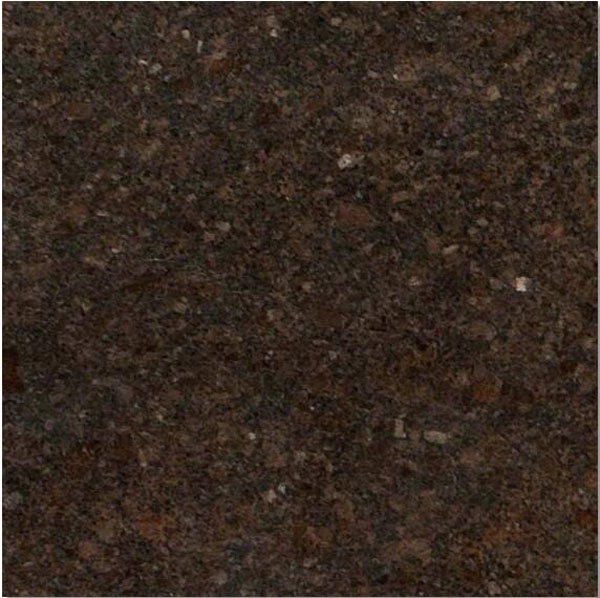 Coffee Brown granite India