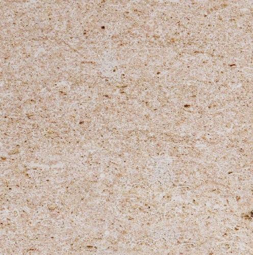 Coral Jaspe Limestone